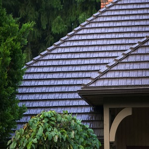 The Classic Shingles You Have Been Looking For